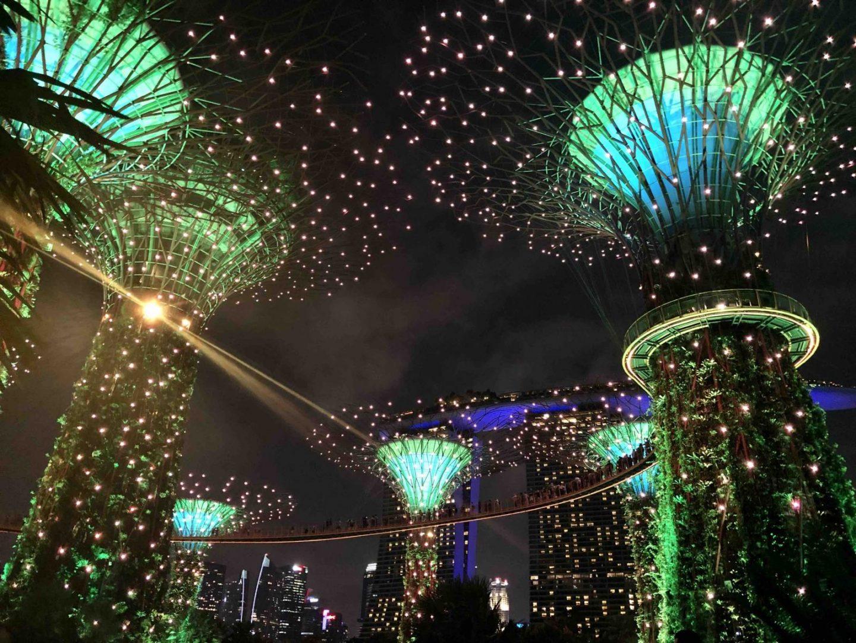 Bild Gardens by the Bay in Singapur