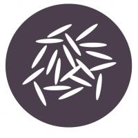 Reishunger_Logo_RGB_3000px